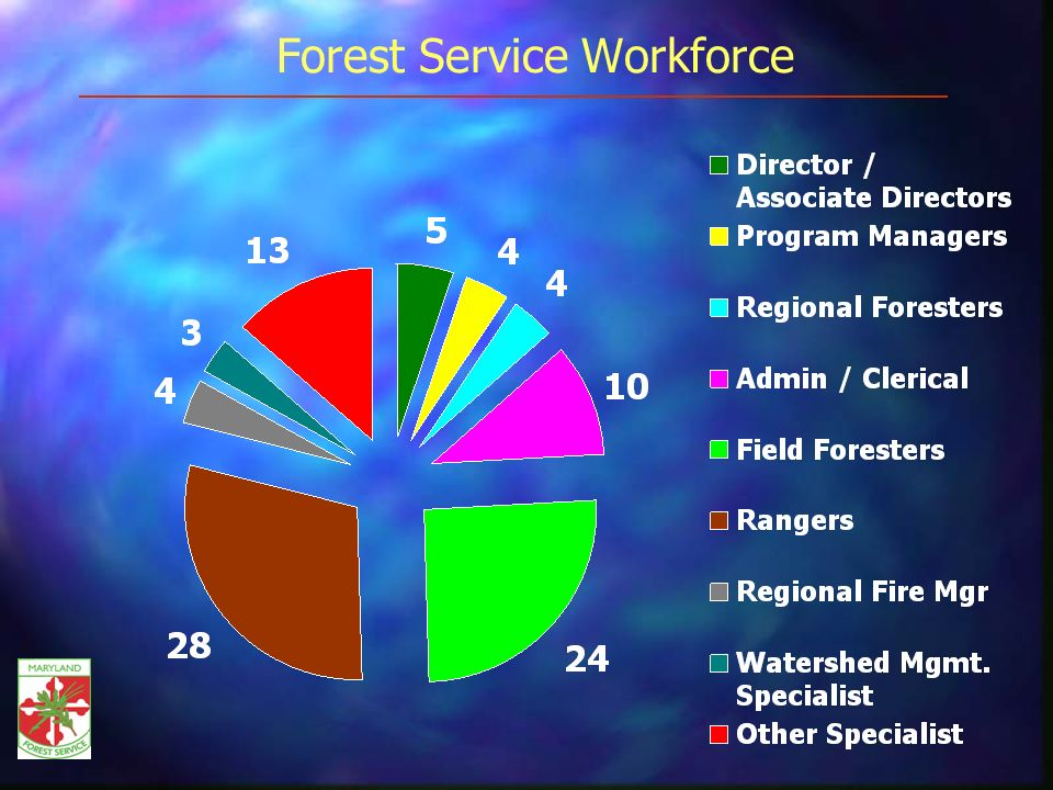 Forest Service Workforce