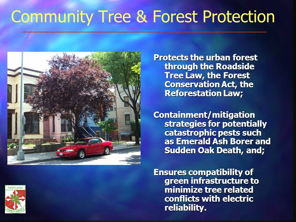 Community Tree & Forest Protection Protects the urban forest through the Roadside Tree Law, the Forest Conservation Act, the Reforestation Law; Containment/mitigation strategies for potentially catastrophic pests such as Emerald Ash Borer and Sudden Oak Death, and; Ensures compatibility of green infrastructure to minimize tree related conflicts with electric reliability.