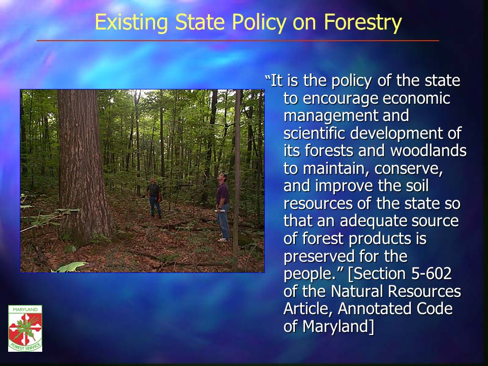 Existing State Policy on Forestry It is the policy of the state to encourage economic management and scientific development of its forests and woodlands to maintain, conserve, and improve the soil resources of the state so that an adequate source of forest products is preserved for the people.