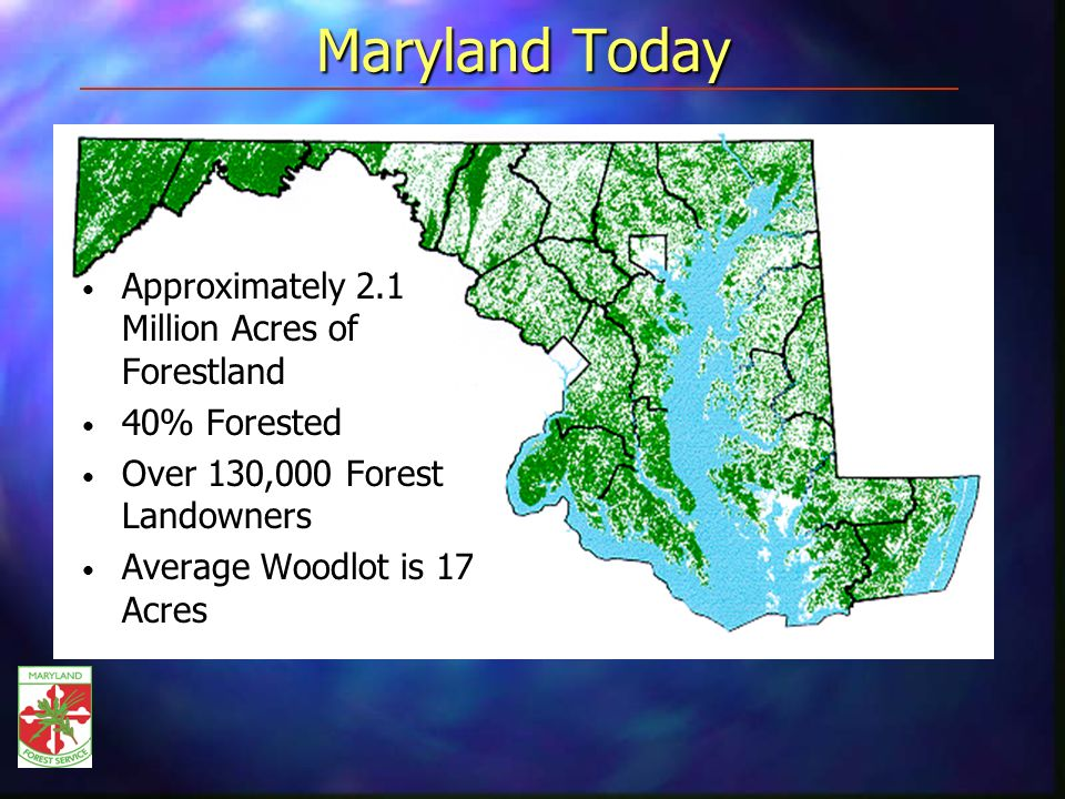 Maryland Today Approximately 2.1 Million Acres of Forestland 40% Forested Over 130,000 Forest Landowners Average Woodlot is 17 Acres