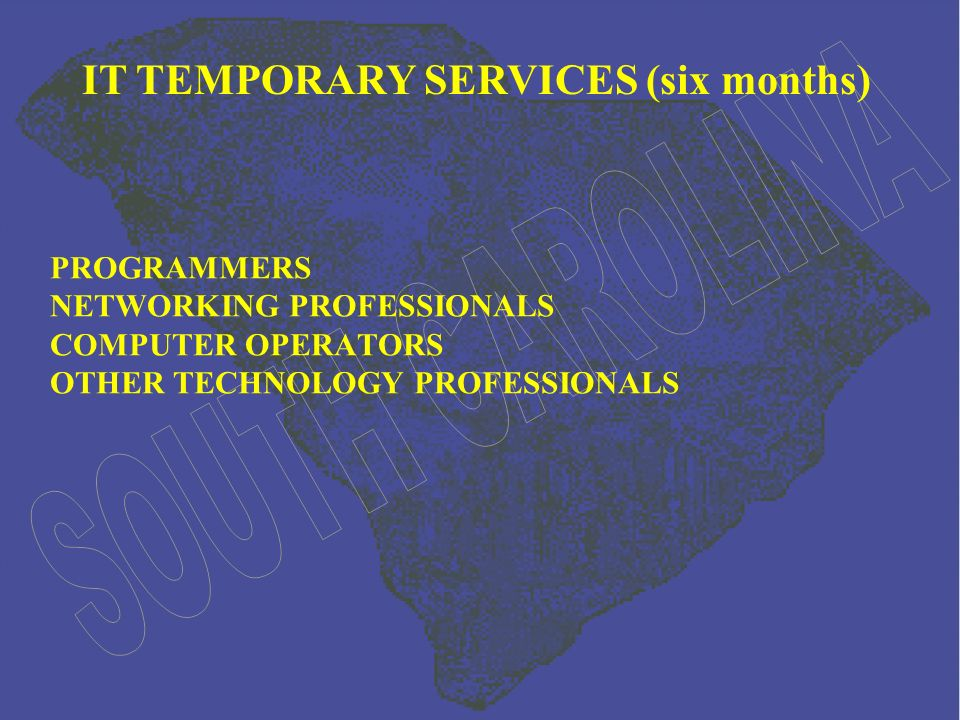 PROGRAMMERS NETWORKING PROFESSIONALS COMPUTER OPERATORS OTHER TECHNOLOGY PROFESSIONALS IT TEMPORARY SERVICES (six months)