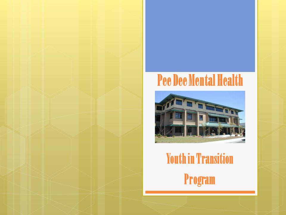 Pee Dee Mental Health Youth in Transition Program
