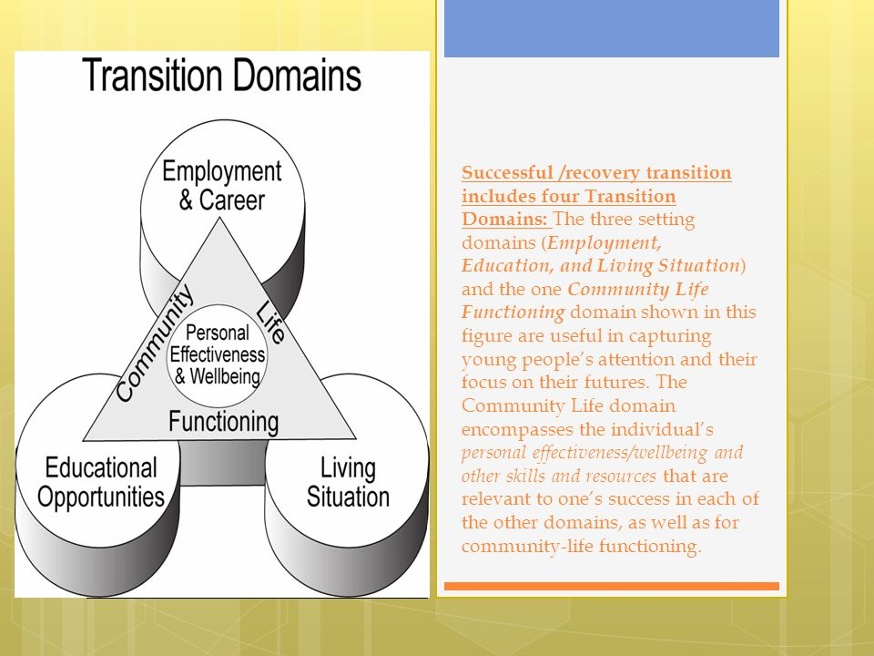 Successful /recovery transition includes four Transition Domains: The three setting domains ( Employment, Education, and Living Situation ) and the one Community Life Functioning domain shown in this figure are useful in capturing young peoples attention and their focus on their futures.