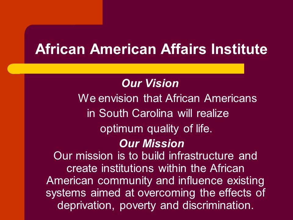 African American Affairs Institute Our Vision We envision that African Americans in South Carolina will realize optimum quality of life. Our Mission O