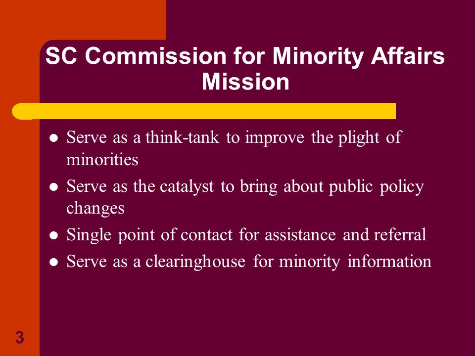 3 SC Commission for Minority Affairs Mission Serve as a think-tank to improve the plight of minorities Serve as the catalyst to bring about public pol