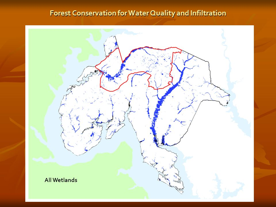 All Wetlands Forest Conservation for Water Quality and Infiltration