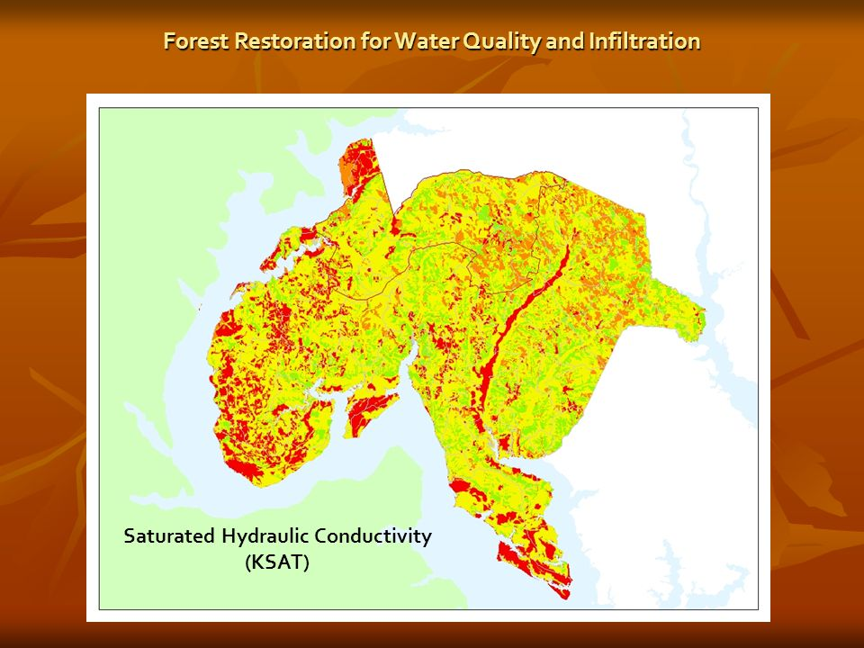 Saturated Hydraulic Conductivity (KSAT) Forest Restoration for Water Quality and Infiltration