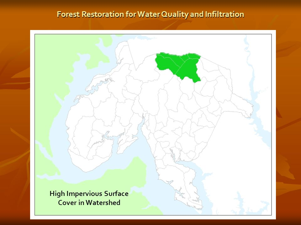 High Impervious Surface Cover in Watershed Forest Restoration for Water Quality and Infiltration