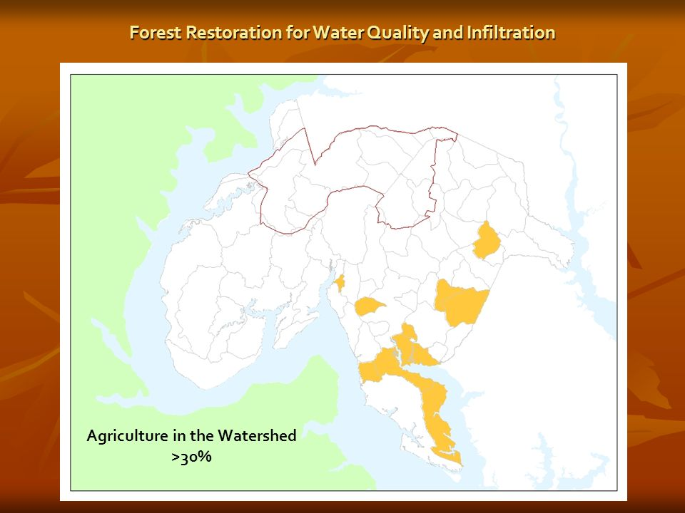 Agriculture in the Watershed >30% Forest Restoration for Water Quality and Infiltration