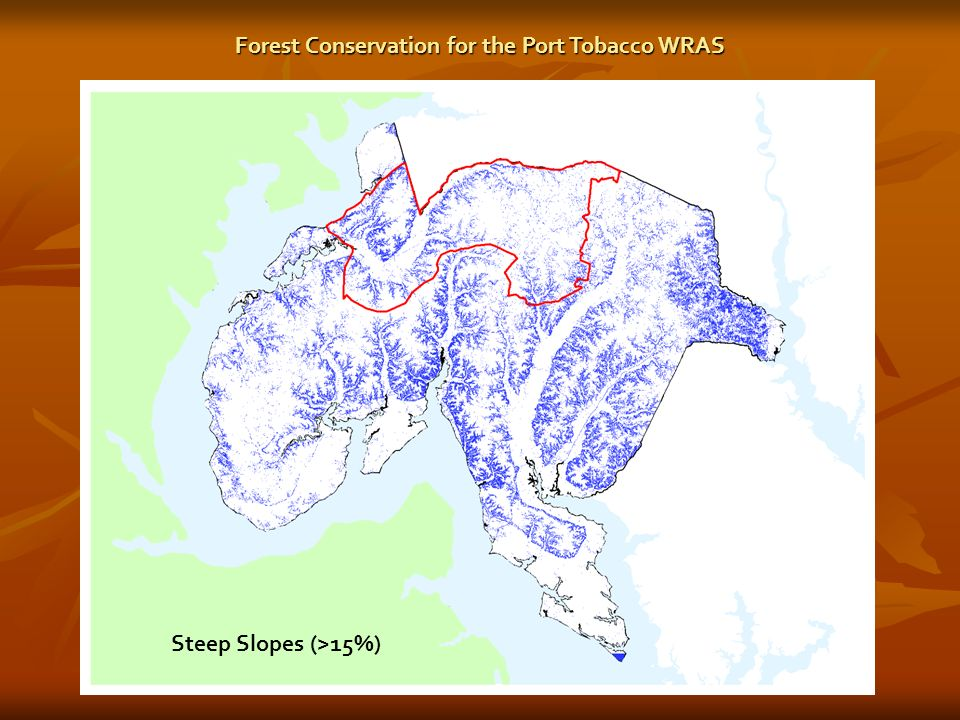 Steep Slopes (>15%) Forest Conservation for the Port Tobacco WRAS