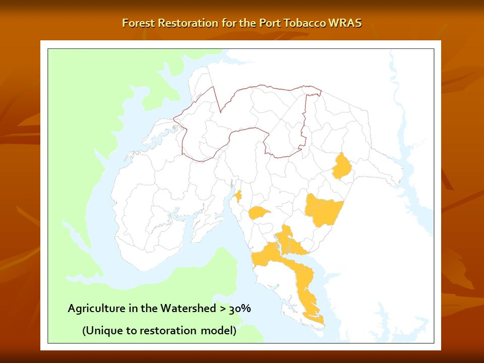 Agriculture in the Watershed > 30% (Unique to restoration model) Forest Restoration for the Port Tobacco WRAS