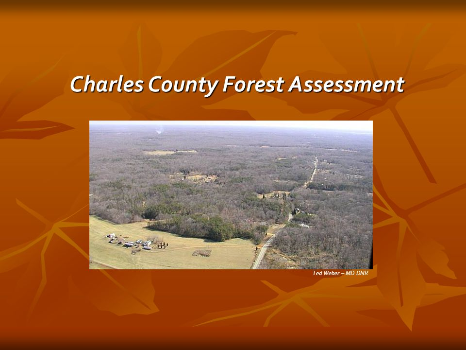 Ted Weber – MD DNR Charles County Forest Assessment