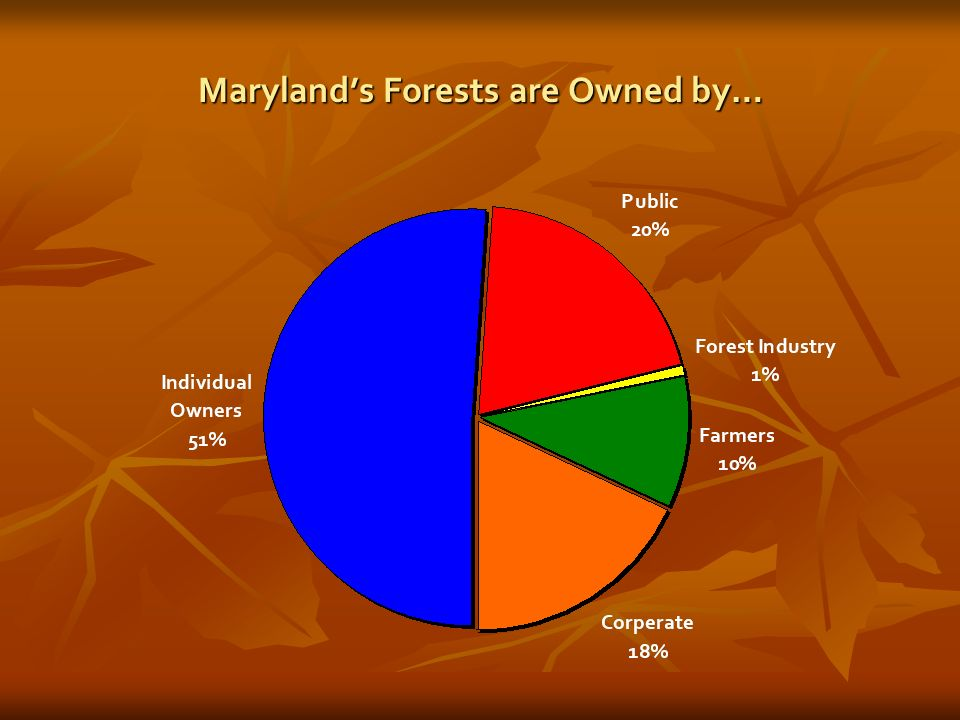 Marylands Forests are Owned by…