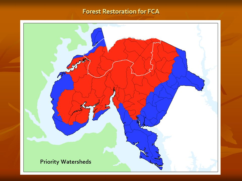 Forest Restoration for FCA Priority Watersheds