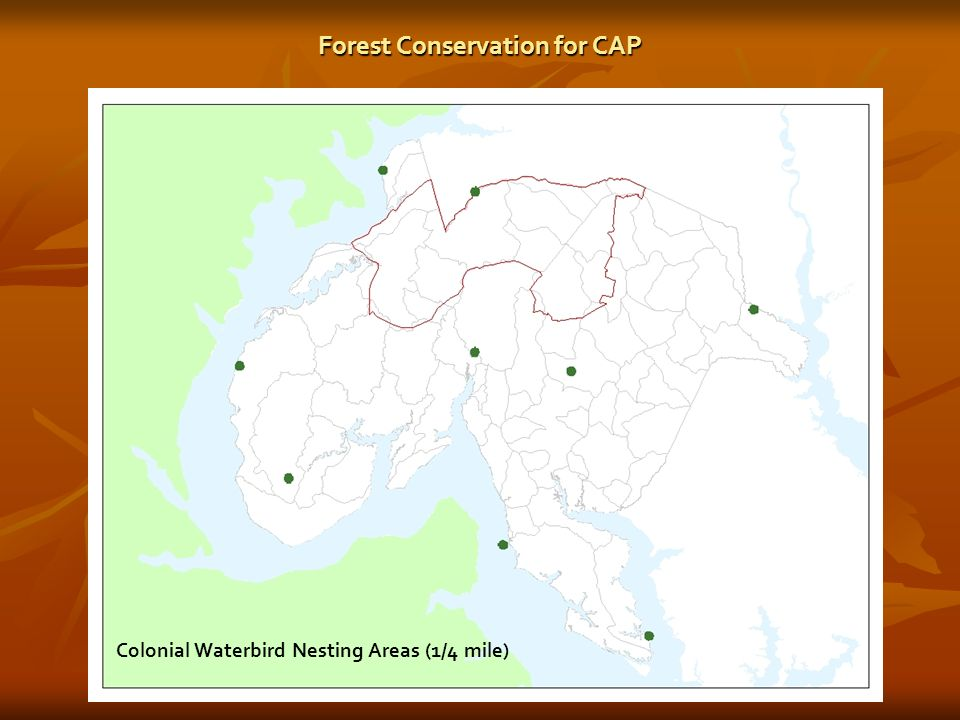 Colonial Waterbird Nesting Areas (1/4 mile) Forest Conservation for CAP