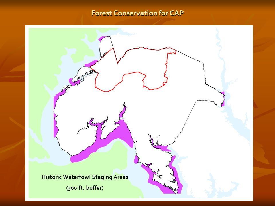 Historic Waterfowl Staging Areas (300 ft. buffer) Forest Conservation for CAP