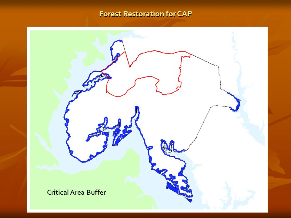 Critical Area Buffer Forest Restoration for CAP