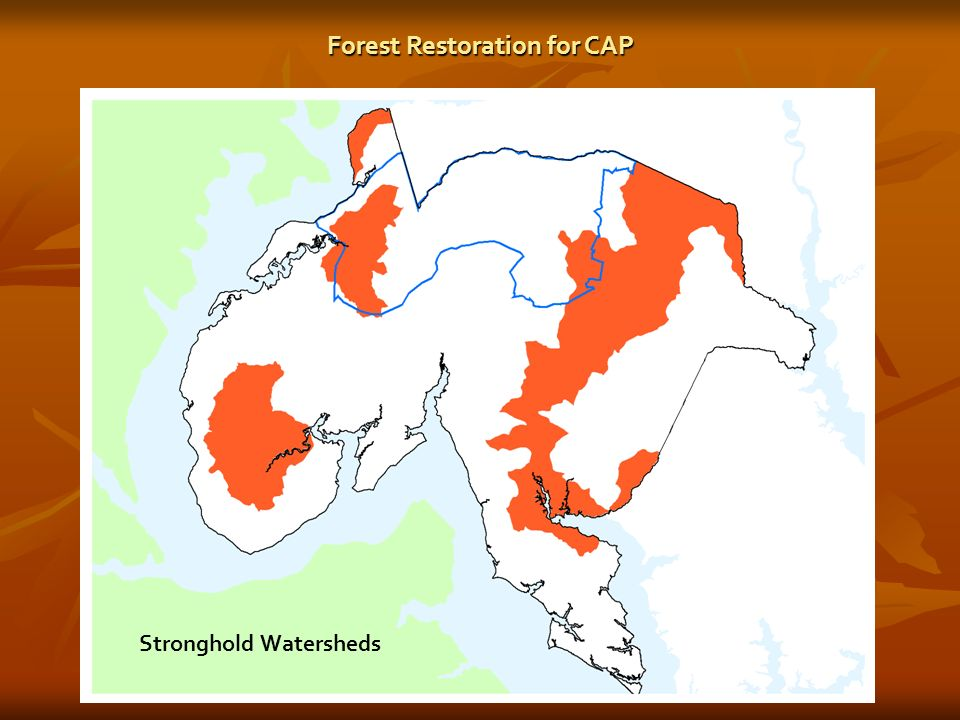 Stronghold Watersheds Forest Restoration for CAP