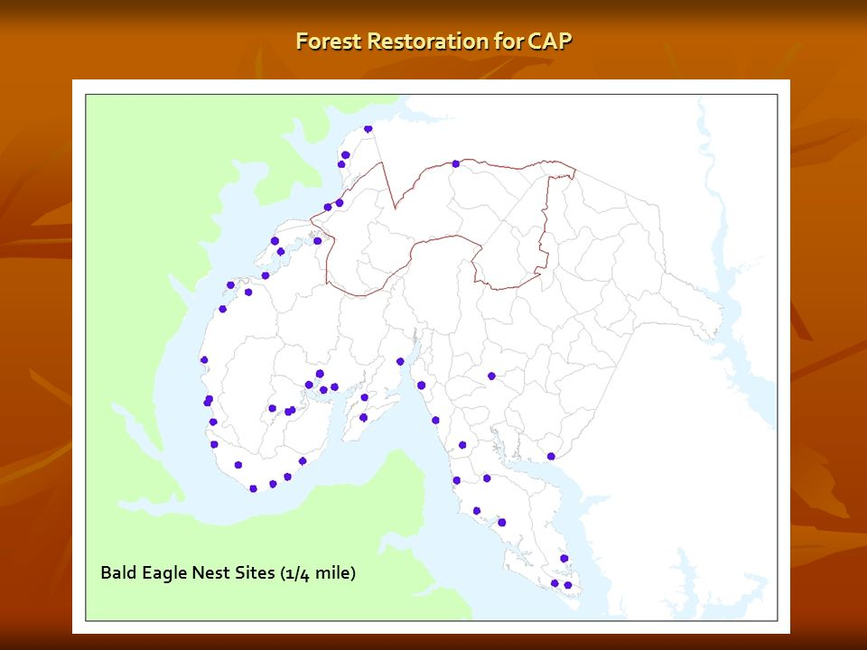 Bald Eagle Nest Sites (1/4 mile) Forest Restoration for CAP