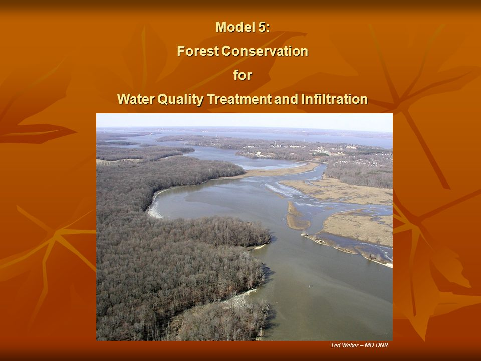 Model 5: Forest Conservation for Water Quality Treatment and Infiltration Ted Weber – MD DNR
