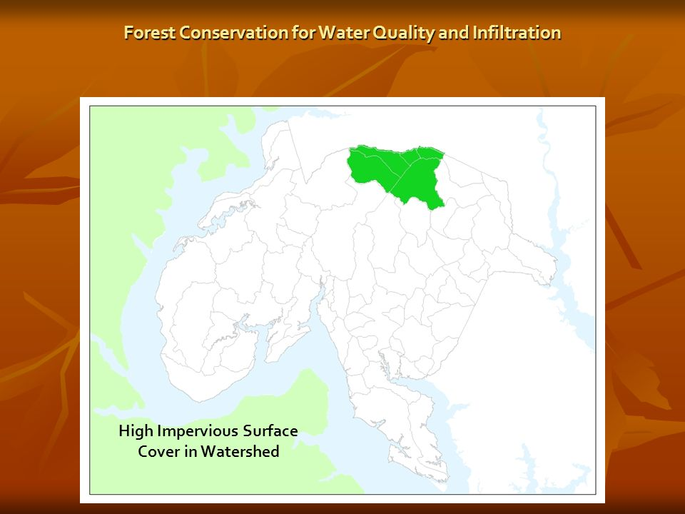 High Impervious Surface Cover in Watershed
