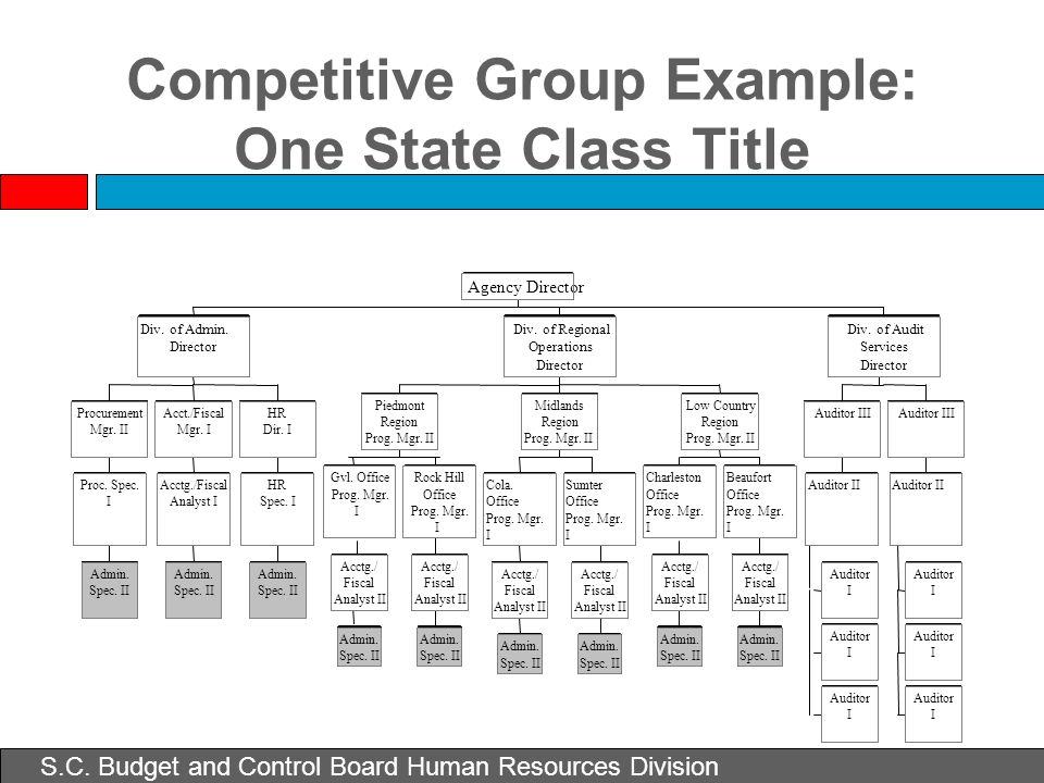 Competitive Group Example: One State Class Title Auditor II Auditor III Auditor I I I Auditor II Auditor III Div. of Audit Services Director Agency Di