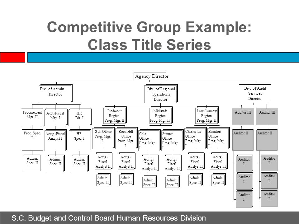 Competitive Group Example: Class Title Series Auditor II Auditor III Auditor I I I Auditor II Auditor III Div. of Audit Services Director Agency Direc