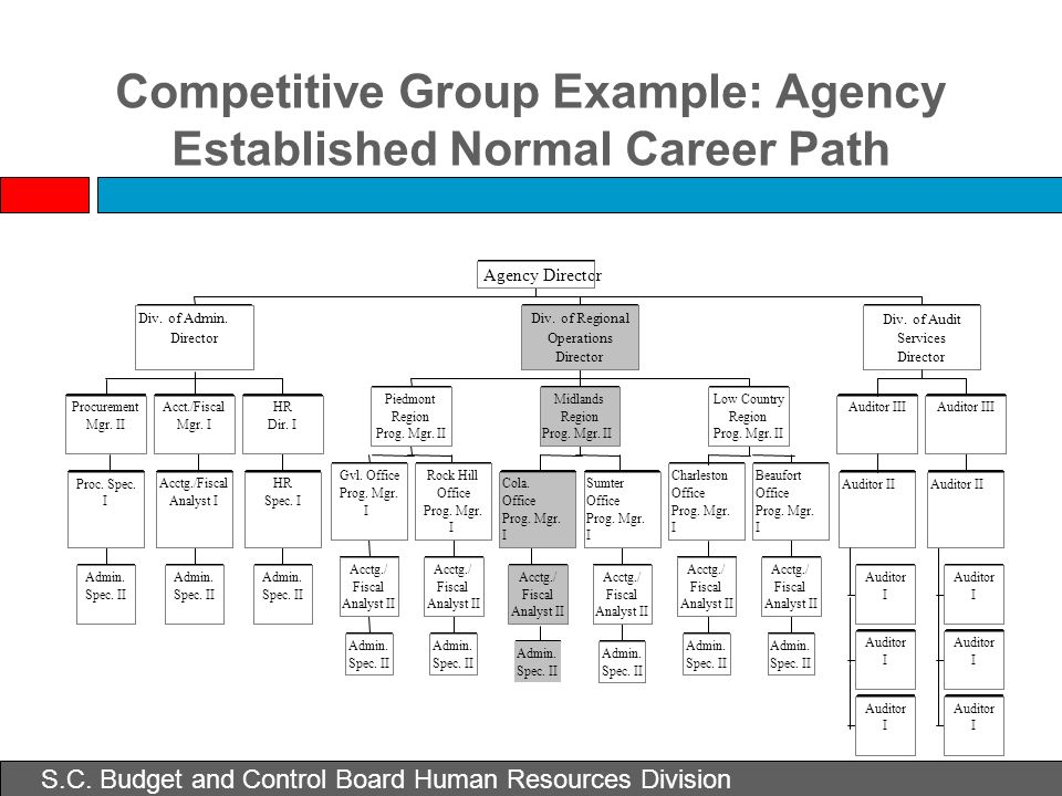 Competitive Group Example: Agency Established Normal Career Path Admin. Spec. II Proc. Spec. I Procurement Mgr. II Auditor II Auditor III Auditor I I