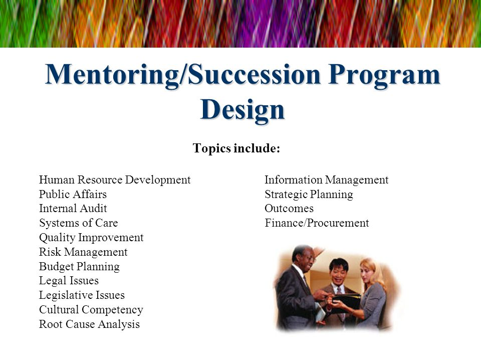 Mentoring/Succession Program Design Topics include: Human Resource Development Information Management Public Affairs Strategic Planning Internal Audit