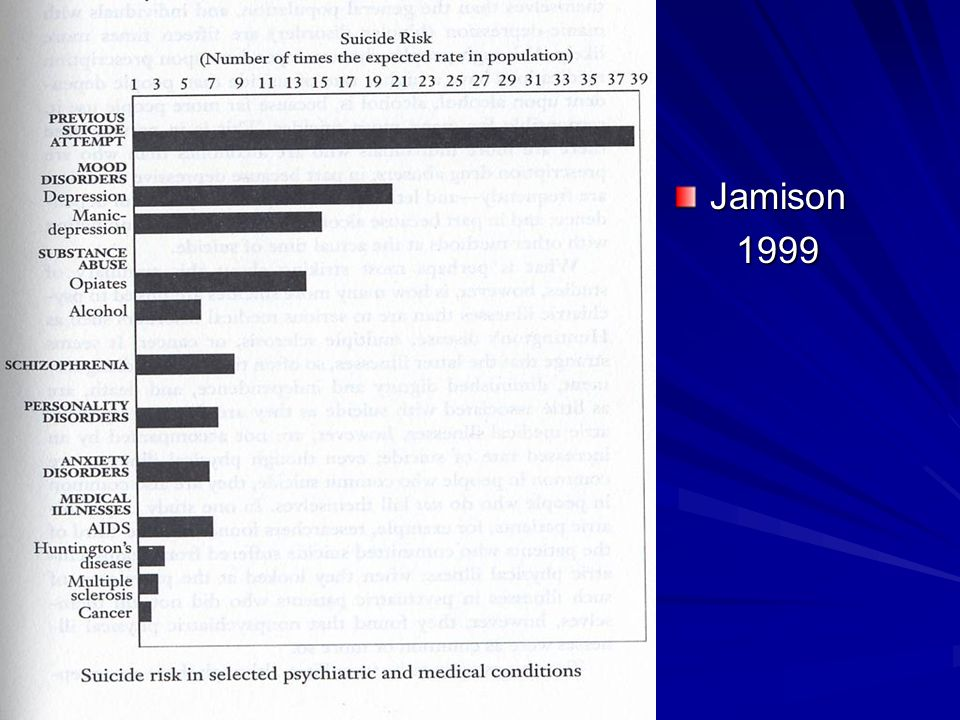 Jamison 1999 1999
