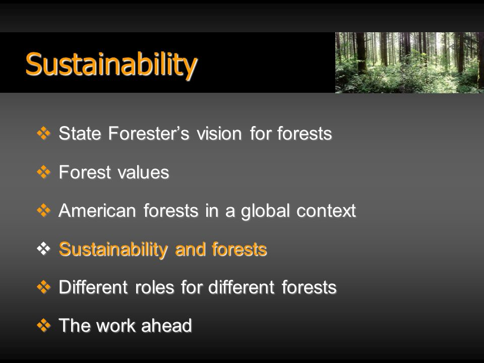 Sustainability State Foresters vision for forests State Foresters vision for forests Forest values Forest values American forests in a global context American forests in a global context Sustainability and forests Sustainability and forests Different roles for different forests Different roles for different forests The work ahead The work ahead