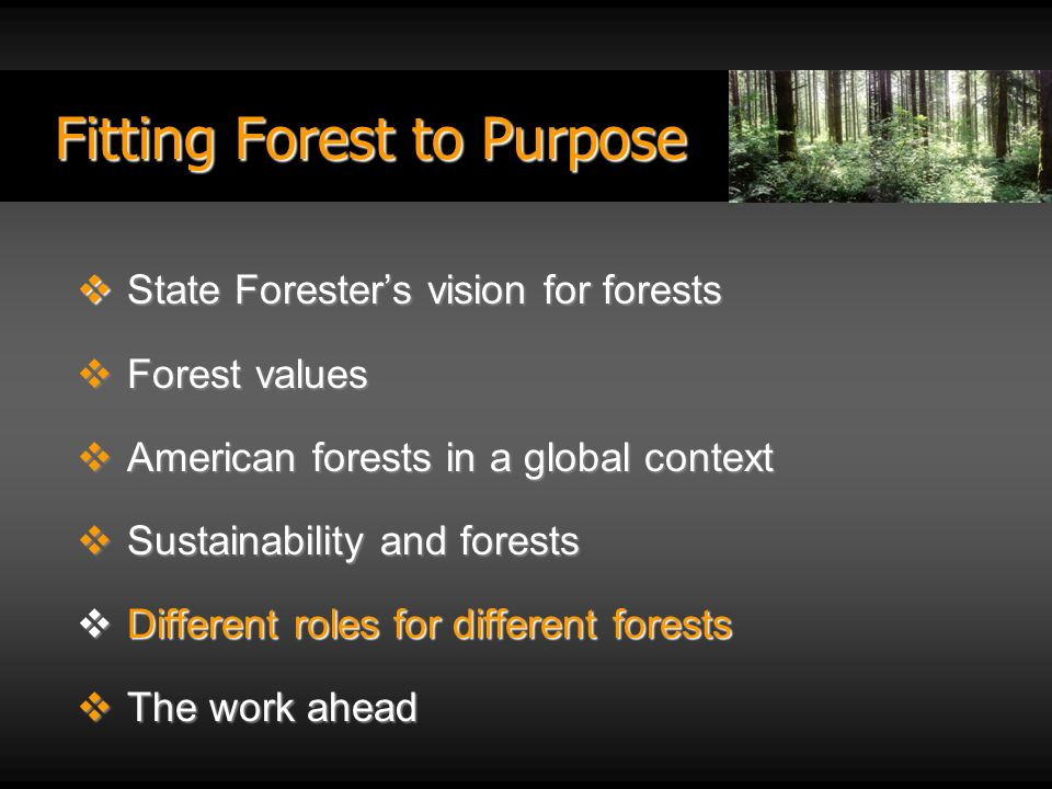 Fitting Forest to Purpose State Foresters vision for forests State Foresters vision for forests Forest values Forest values American forests in a global context American forests in a global context Sustainability and forests Sustainability and forests Different roles for different forests Different roles for different forests The work ahead The work ahead