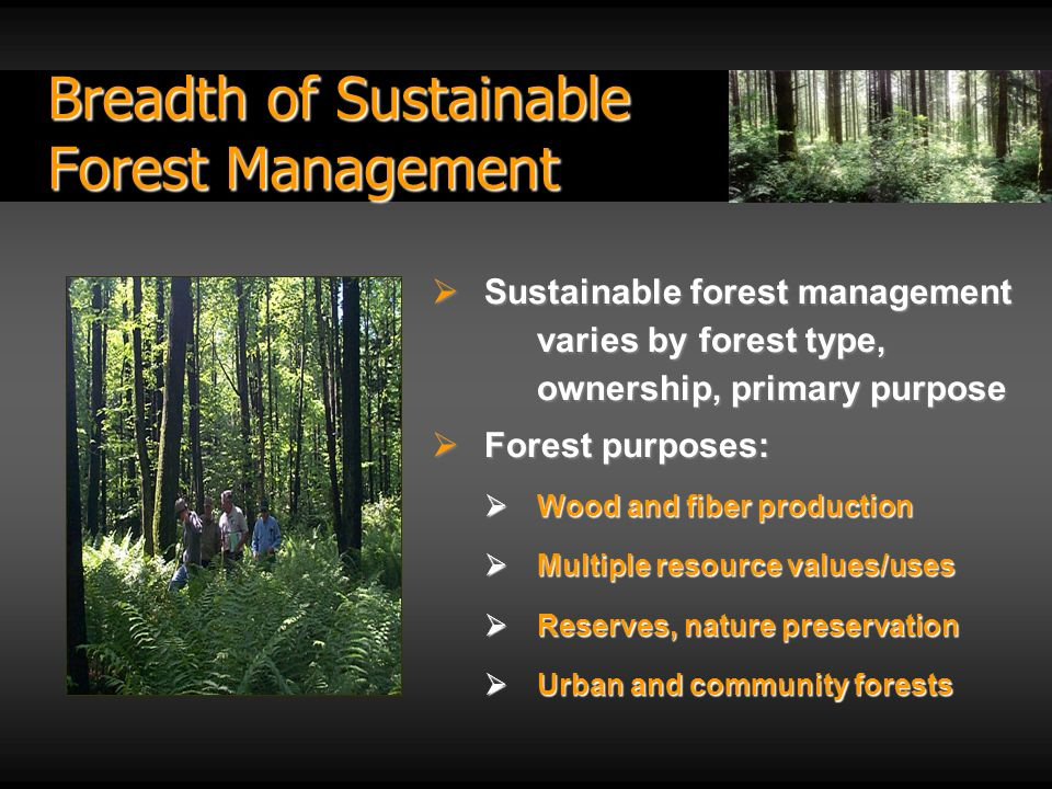 Breadth of Sustainable Forest Management Sustainable forest management varies by forest type, ownership, primary purpose Sustainable forest management varies by forest type, ownership, primary purpose Forest purposes: Forest purposes: Wood and fiber production Wood and fiber production Multiple resource values/uses Multiple resource values/uses Reserves, nature preservation Reserves, nature preservation Urban and community forests Urban and community forests