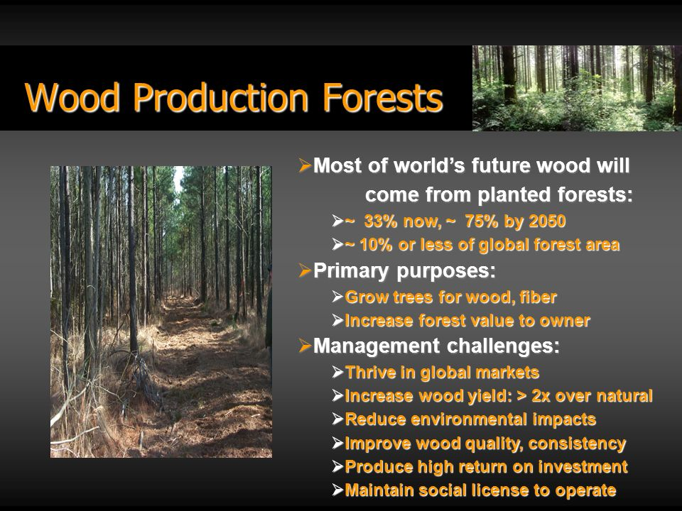 Wood Production Forests Most of worlds future wood will come from planted forests: Most of worlds future wood will come from planted forests: ~ 33% now, ~ 75% by 2050 ~ 33% now, ~ 75% by 2050 ~ 10% or less of global forest area ~ 10% or less of global forest area Primary purposes: Primary purposes: Grow trees for wood, fiber Grow trees for wood, fiber Increase forest value to owner Increase forest value to owner Management challenges: Management challenges: Thrive in global markets Thrive in global markets Increase wood yield: > 2x over natural Increase wood yield: > 2x over natural Reduce environmental impacts Reduce environmental impacts Improve wood quality, consistency Improve wood quality, consistency Produce high return on investment Produce high return on investment Maintain social license to operate Maintain social license to operate