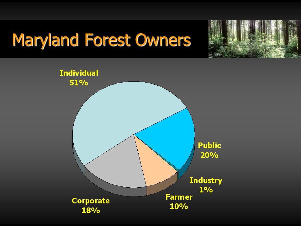 Maryland Forest Owners