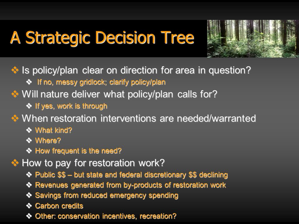 A Strategic Decision Tree Is policy/plan clear on direction for area in question.
