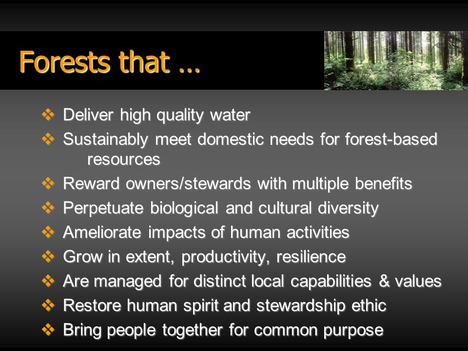 Forests that … Deliver high quality water Deliver high quality water Sustainably meet domestic needs for forest-based resources Sustainably meet domestic needs for forest-based resources Reward owners/stewards with multiple benefits Reward owners/stewards with multiple benefits Perpetuate biological and cultural diversity Perpetuate biological and cultural diversity Ameliorate impacts of human activities Ameliorate impacts of human activities Grow in extent, productivity, resilience Grow in extent, productivity, resilience Are managed for distinct local capabilities & values Are managed for distinct local capabilities & values Restore human spirit and stewardship ethic Restore human spirit and stewardship ethic Bring people together for common purpose Bring people together for common purpose