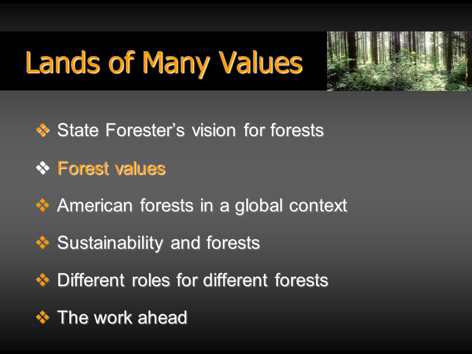 Lands of Many Values State Foresters vision for forests State Foresters vision for forests Forest values Forest values American forests in a global context American forests in a global context Sustainability and forests Sustainability and forests Different roles for different forests Different roles for different forests The work ahead The work ahead