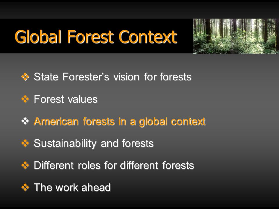 Global Forest Context State Foresters vision for forests State Foresters vision for forests Forest values Forest values American forests in a global context American forests in a global context Sustainability and forests Sustainability and forests Different roles for different forests Different roles for different forests The work ahead The work ahead