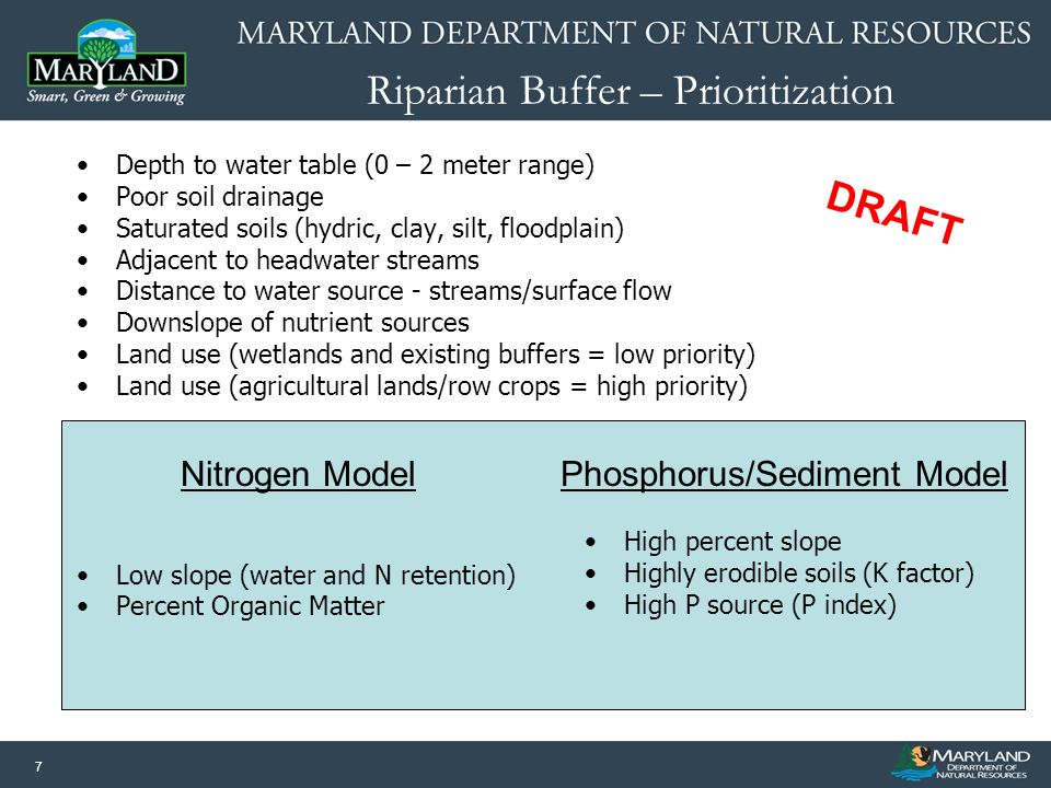 7 Riparian Buffer – Prioritization Depth to water table (0 – 2 meter range) Poor soil drainage Saturated soils (hydric, clay, silt, floodplain) Adjace