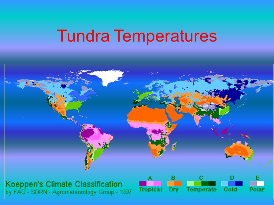 Tundra Temperatures