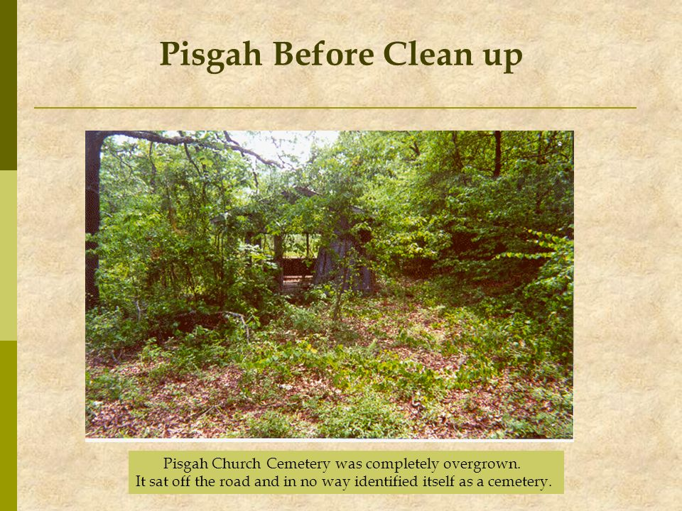Pisgah Church Cemetery was completely overgrown. It sat off the road and in no way identified itself as a cemetery. Pisgah Before Clean up