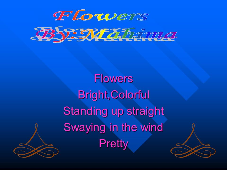 FlowersBright,Colorful Standing up straight Swaying in the wind Pretty