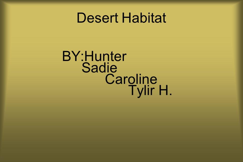 Desert Habitat BY:Hunter Sadie Caroline Tylir H.
