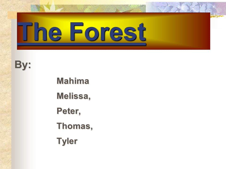 The Forest By: By:MahimaMelissa,Peter,Thomas,Tyler