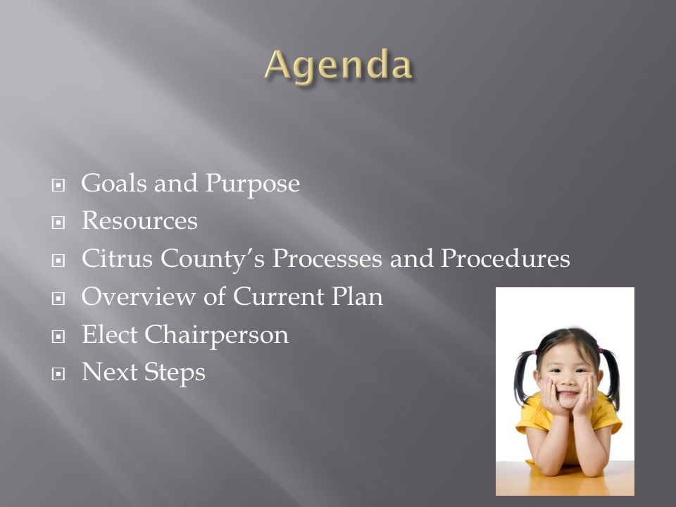 Goals and Purpose Resources Citrus Countys Processes and Procedures Overview of Current Plan Elect Chairperson Next Steps