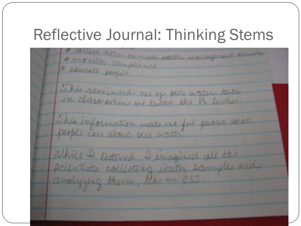 Reflective Journal: Thinking Stems