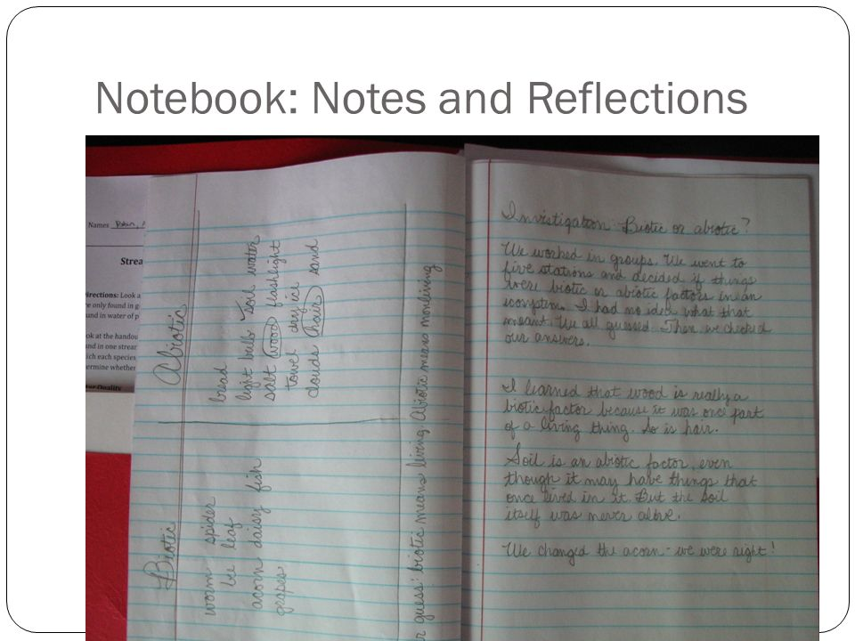 Notebook: Notes and Reflections