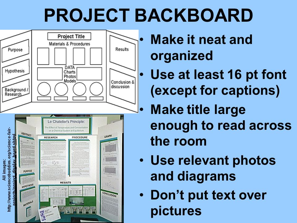 PROJECT BACKBOARD Make it neat and organized Use at least 16 pt font (except for captions) Make title large enough to read across the room Use relevan