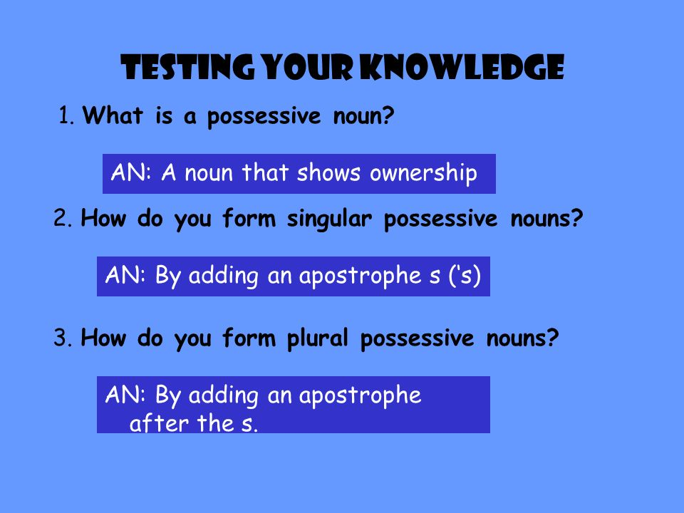 Guided Practice Identify the bolded word in each sentence by writing plural noun, singular, singular possessive noun, plural possessive noun, or contr